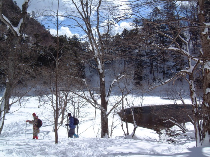 ashiato A 湯元の森と展望コース 〜動物の足あといっぱいの森 & 大展望〜