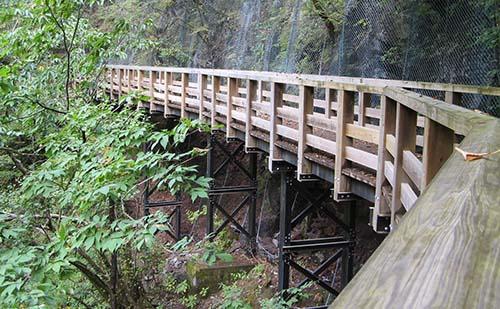 裏見の滝への道