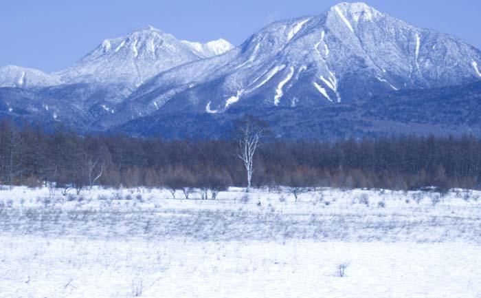 冬の小田代ヶ原